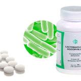 lactobacillus acidophilus propiedades y beneficios