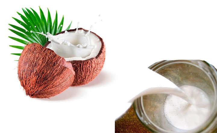 leche de coco propiedades