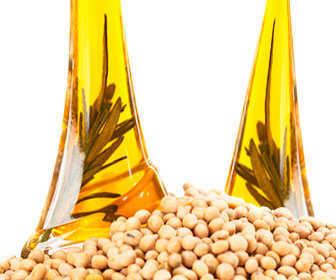 lecitina y acidos grasos