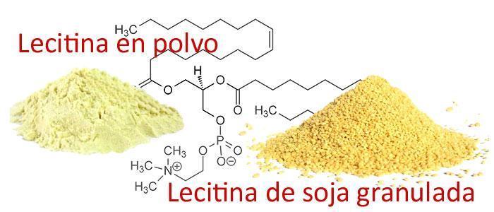 Propiedades y beneficios de la lecitina de soja