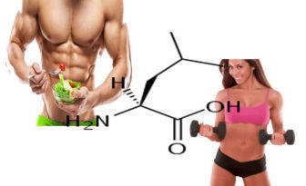 leucina formula, función y efectos secundarios