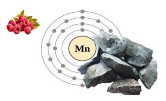 propiedades y beneficios del manganeso