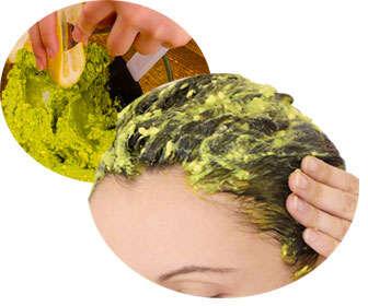 como hacer mascarilla de aguacate o avocado para el cabello