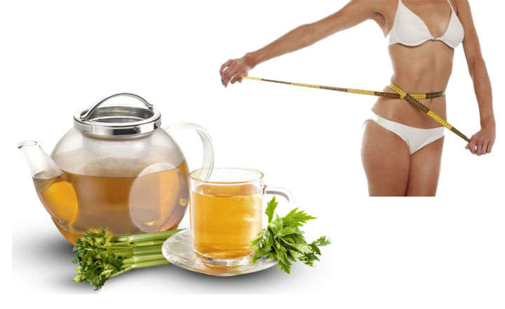 las mejores infusiones para adelgazar y perder peso