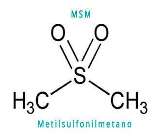 Efectos secundarios del MSM y estructura química del metilsulfonilmetano