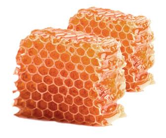 miel composicion y beneficios para la alimentación