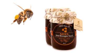 propiedades de la miel de bosque