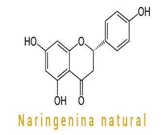 Propiedades y beneficios de naringenina natural