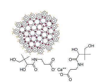 Diferencias entre pantotenato, caseinato y citrato calcico