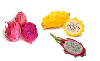 Pitahaya, propiedades y variedades