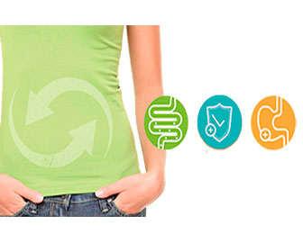 Beneficios de la chufa como prebiótico para la digestión y el aparato digestivo