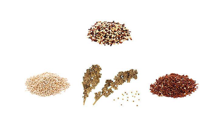 Propiedades y beneficios de quinoa