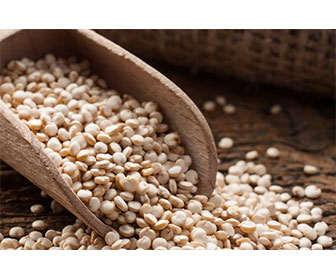 quinoa valor nutricional y composición