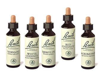 Son buenas las pastillas homeopaticas para adelgazar
