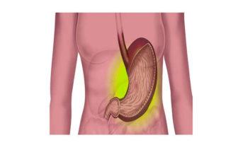 secrecion acido clorhidrico en el estomago