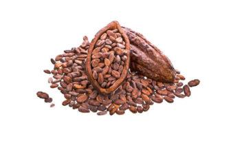 Propiedades y beneficios de semillas de cacao