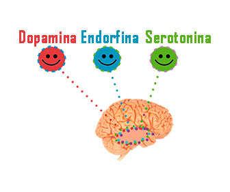 hormonas serotonina, dopamina y endorfinas