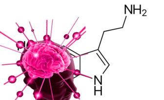 que es la serotonina