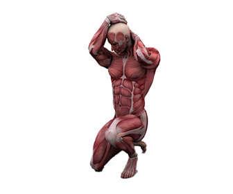 suplemento para hipertrofia muscular