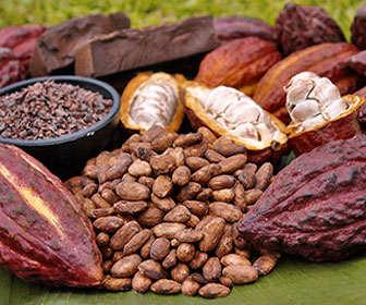 alimentos ricos en teobromina