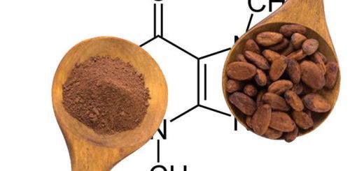 propiedades y beneficios de teobromina