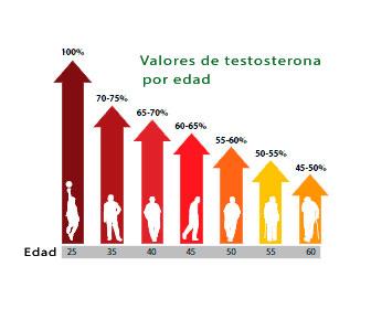 niveles de testosterona por edad