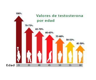efectos de solfa syllable pérdida produccion de testosterona