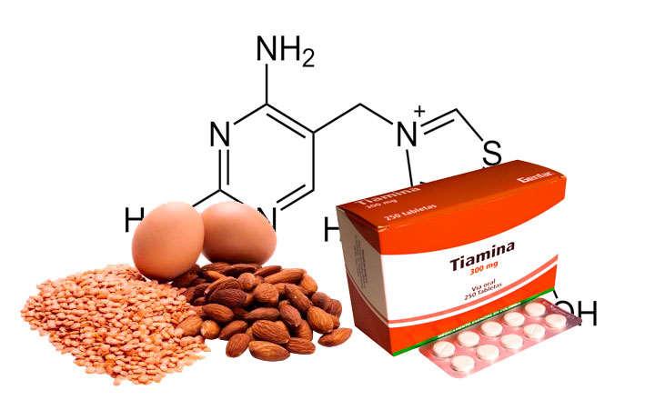 Qué es Tiamina y para qué sirve