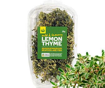 Planta tomillo limonero y hojas secas para infusiones
