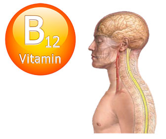 vitamina b12 baja, carencia o deficiencia